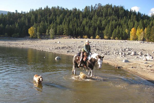 lake como horse ride montana