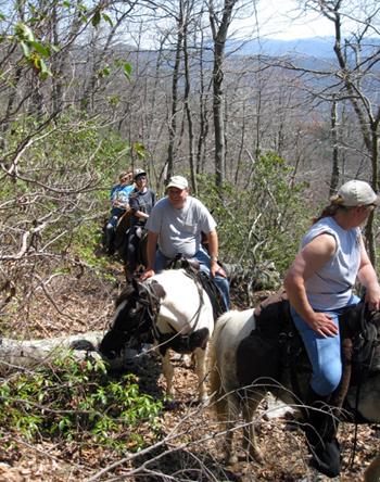 laurel run horse trails virginia