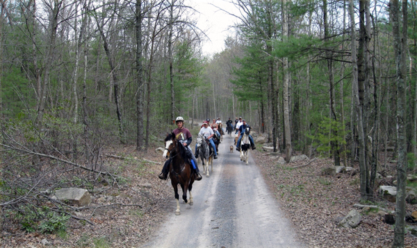 laurel run horse trails virginia moonlight ride