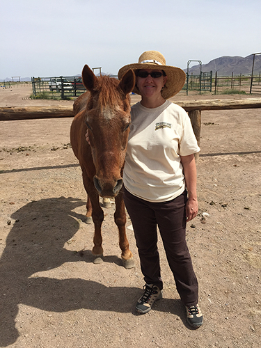 Laurie horseback arizona