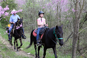 leave no trace horse riding