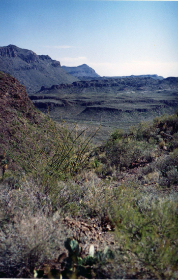 big bend views state park ranch
