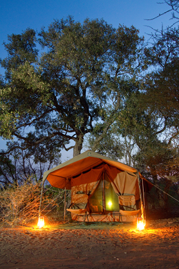 limpopo horse safaris camp