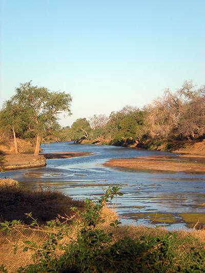 Limpopo river botswana safari