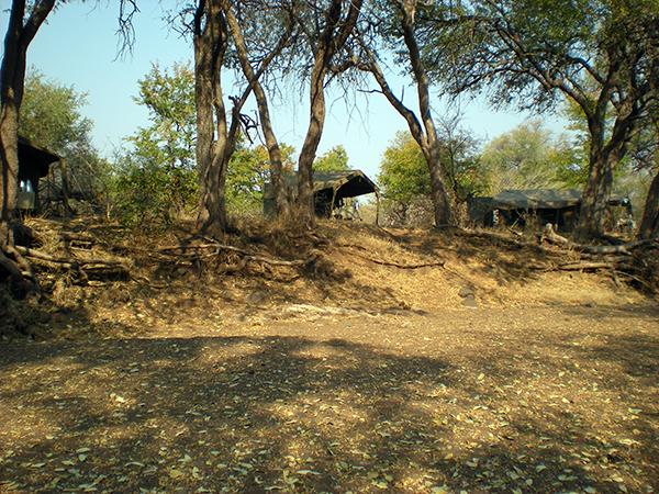 Limpopo horse safari camp africa botswana