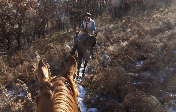 Lincoln County's White Mountain Wilderness horseback trails
