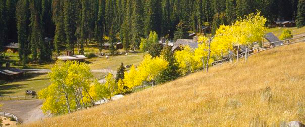 lone mountain ranch leaves fall colors