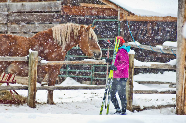 lone mountain guest ranch snow