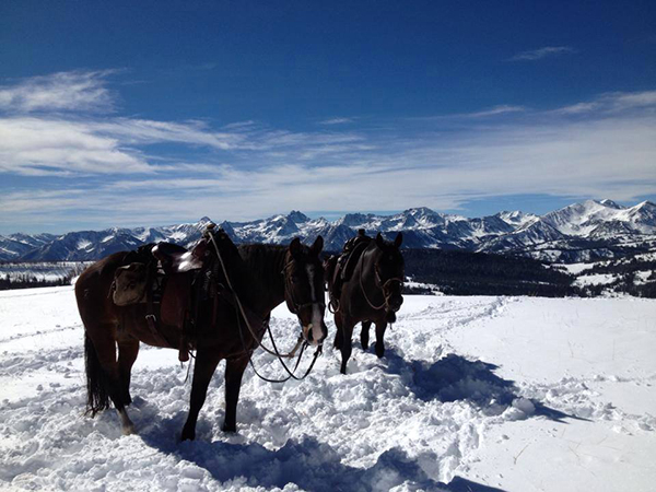 lone mountain ranch taylor fork horseback snow