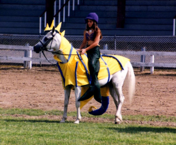 seahorse-and-mermaid-costume & Halloween Costumes for Horses | Equitrekking