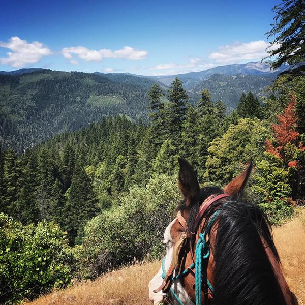 Marble Mountain Ranch California