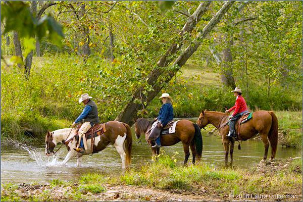 Marriott Ranch Virginia