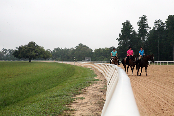 aiken training track horseback riding