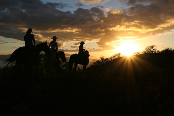maui sunset horse ride
