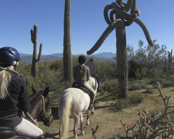 mcdowell trails arizona horseback