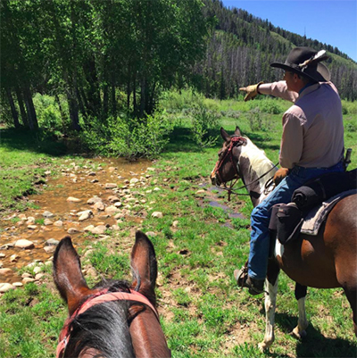 horseback riding medicine bow