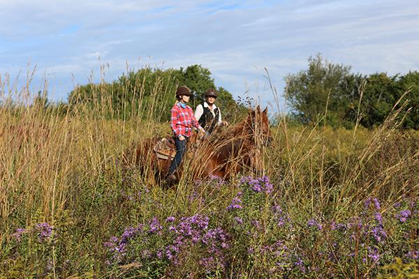 darley newman riding horse through midewin national tallgrass prairie in illinois