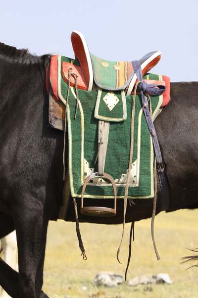Mongolia saddle