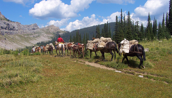 A Lazy H Outfitters montana pack trips