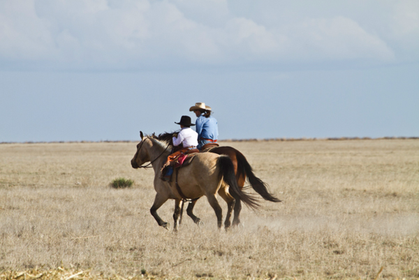 mother son horse riding