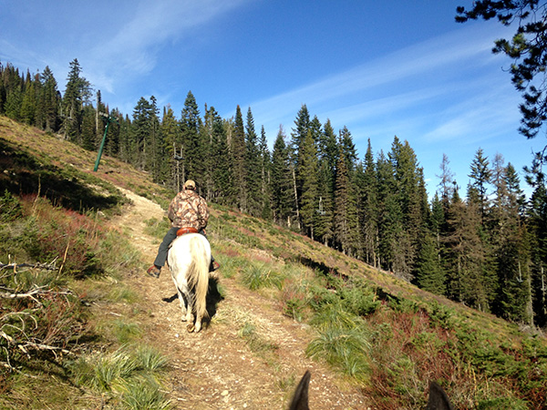Mount Spokane Washington horseback