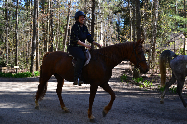 riding horses at mount toby demonstration forest in massachusetts