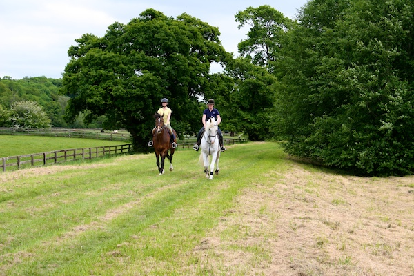 mount juliet estate equestrian vacation