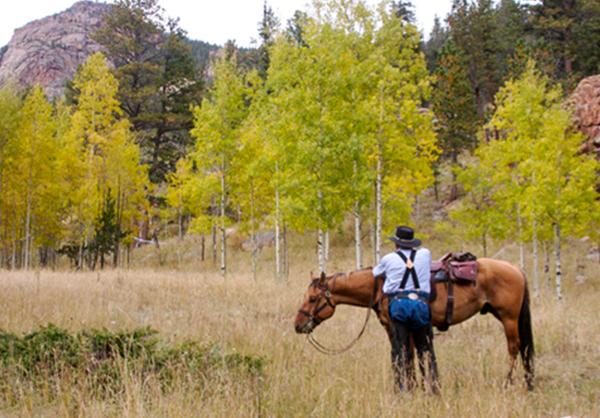 mountain horse ride