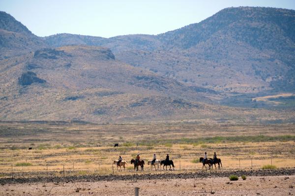 mountains horseback arizona