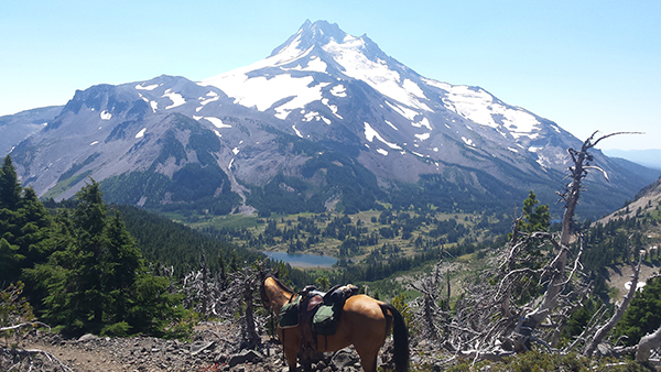 Mt Jefferson horseback riding Pacific Crest Trail