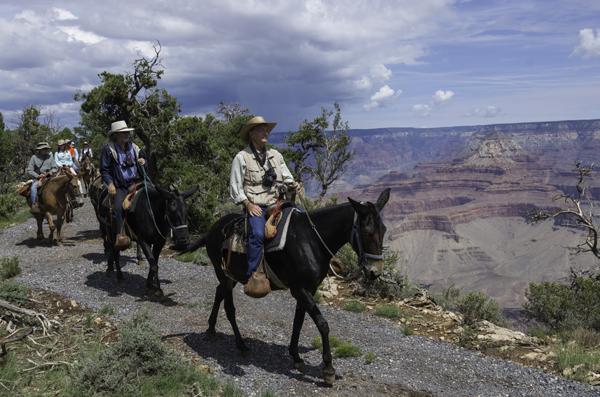 Grand Canyon Mule Ride South Rim