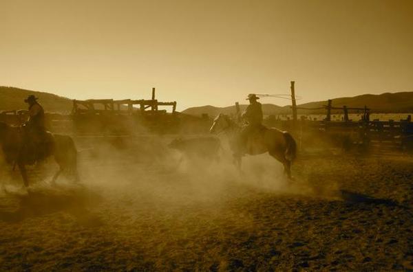 horseback riding nm gila