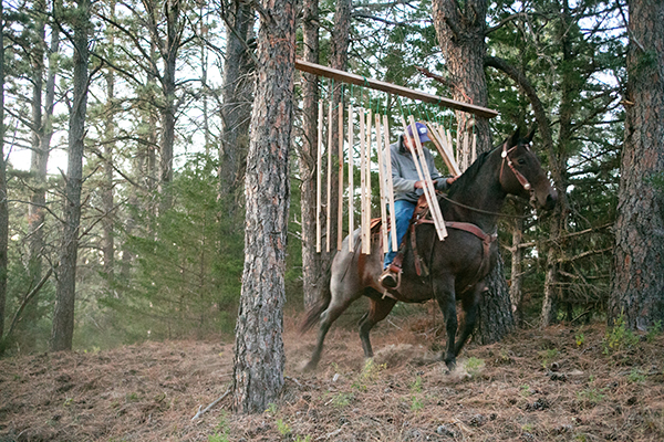 Nebraska National Forest horseback riding obstacles