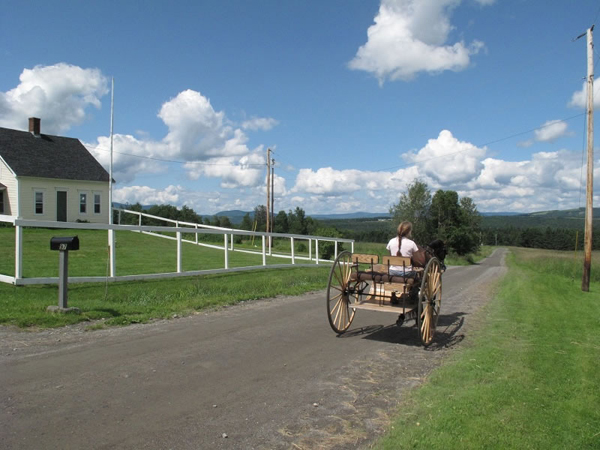 New England carriage driving vacation maine