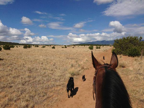 new mexico trail riding
