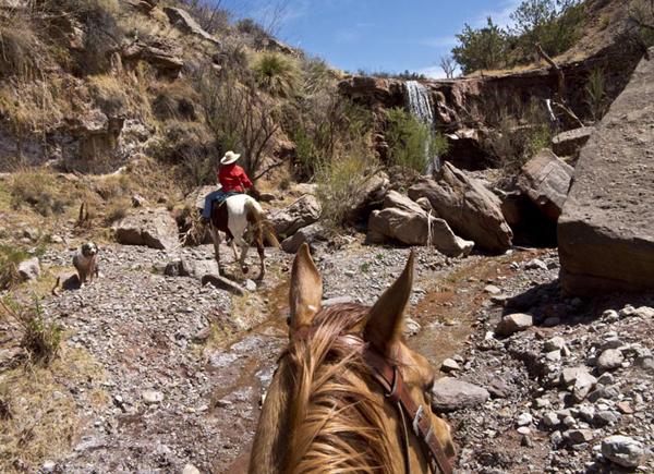 new mexico waterfalls horseback ride