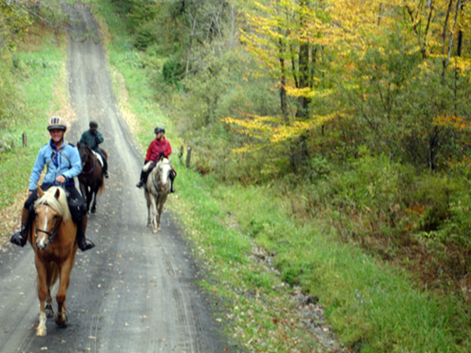 mary everhart trail riding in new york state