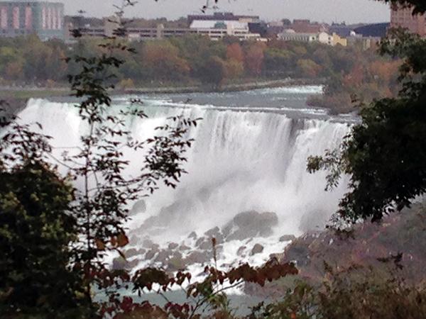 niagara falls leaves