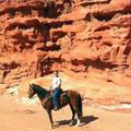 new mexico horse adventures travel deals