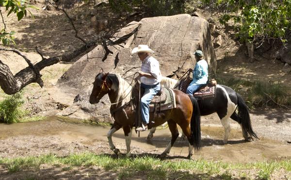 new mexico trail riding petroglyph