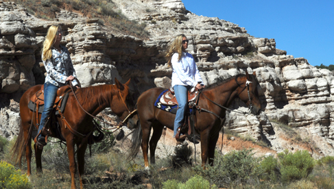 horseback riding new mexico