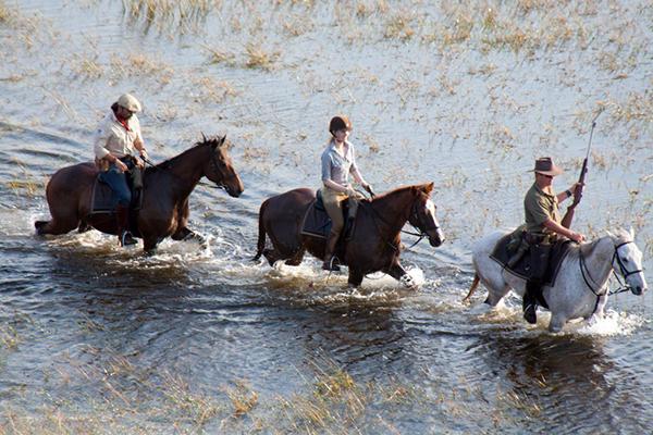Okavango Delta horse swim