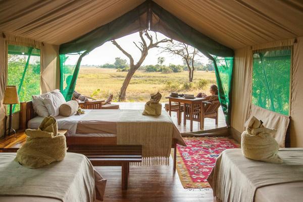 okavango delta horse safari accommodations