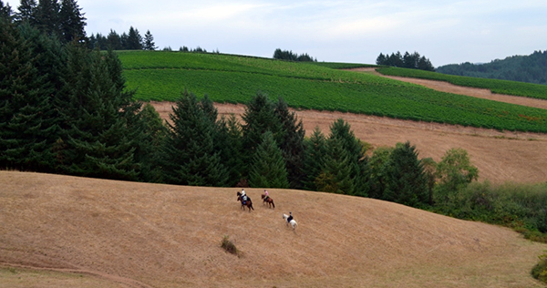 oregon coast equestrian vacations