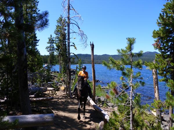 oregon horse trails lava lake