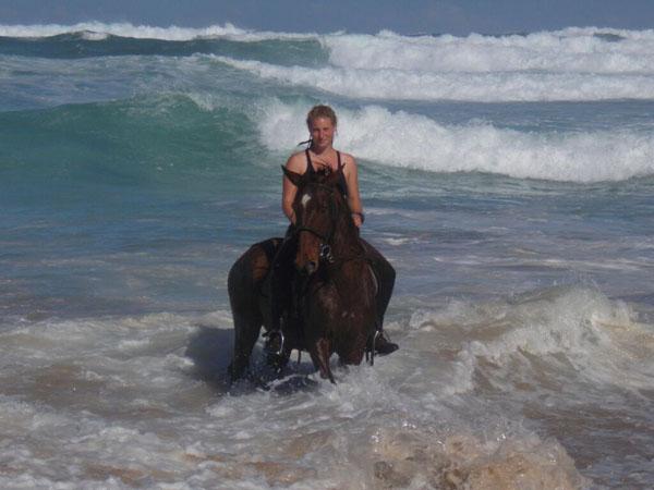 Peas on Earth Horseback Riding Ocean