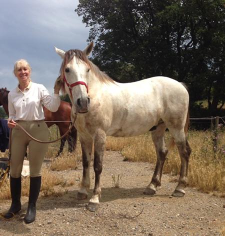 Peralada horseback Andalusian