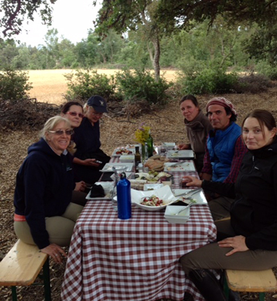 picnic old cork forest spain