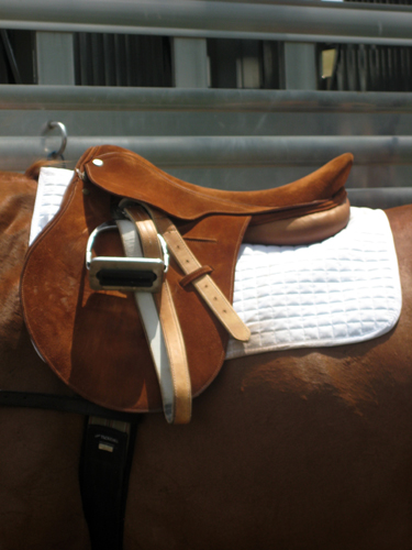 polo saddle