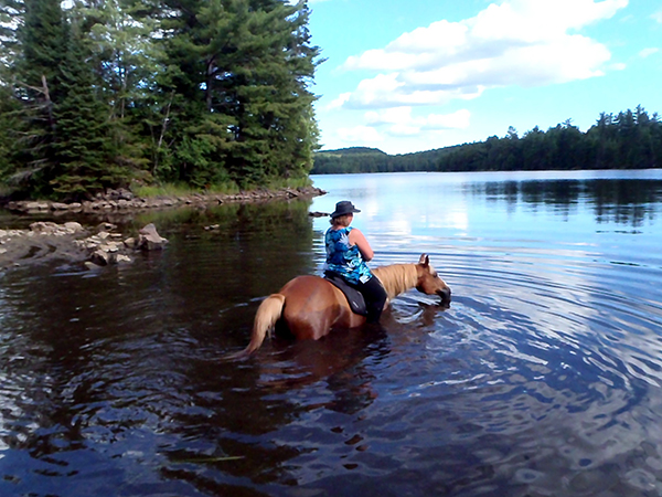 Horse Country Campground horse riding Ottawa River